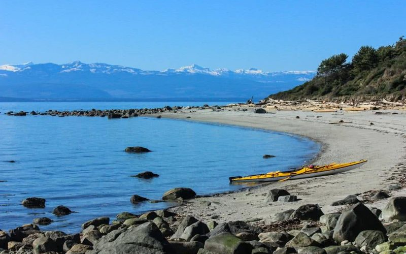 Savary-Island-Beaches